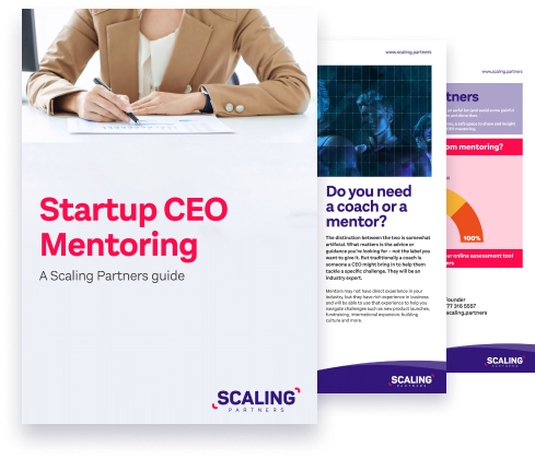 Startup Guide To CEO Mentoring